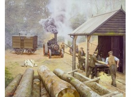 Sawmill and Steam