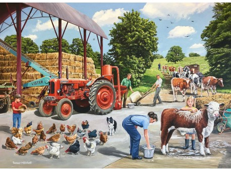 Busy Farmyard
