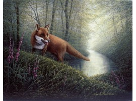 The Roaming Fox