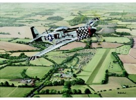 Woodchurch Warbird
